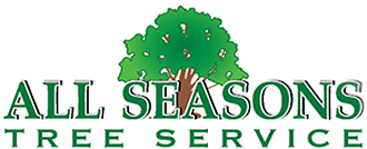 All Season's Tree Service, St. Paul