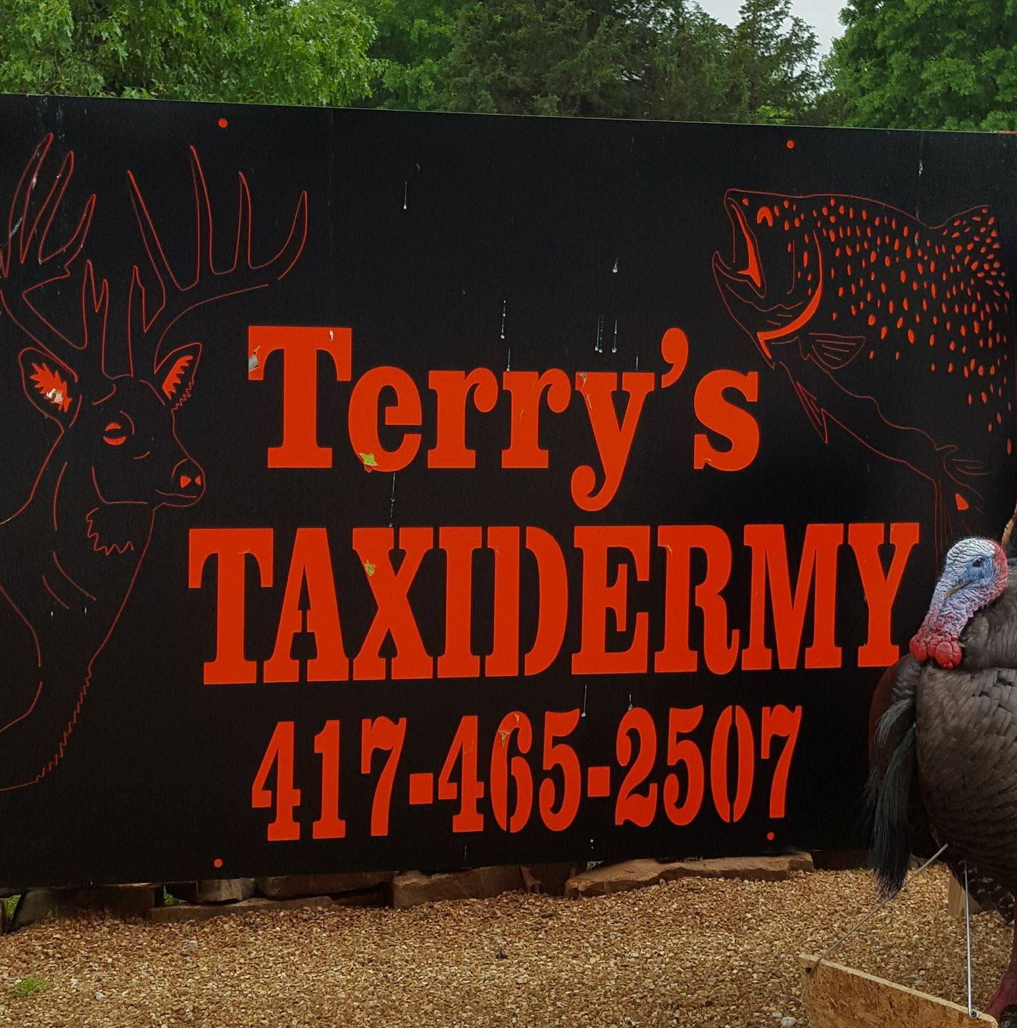 Terry's Taxidermy